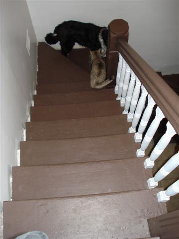 stairs-after-small