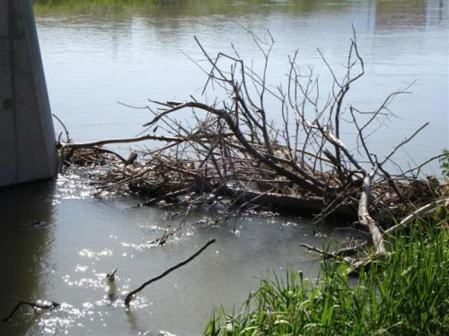 jordan-dam (Small)