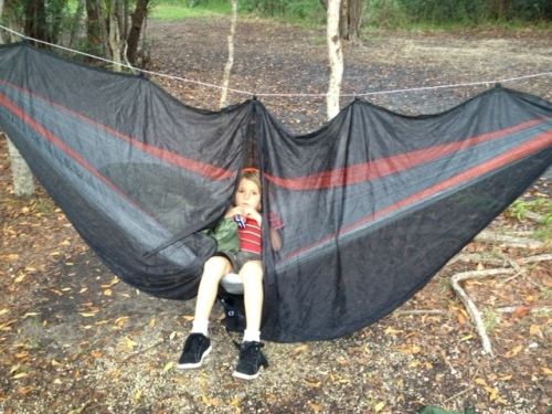 mosquito hammock