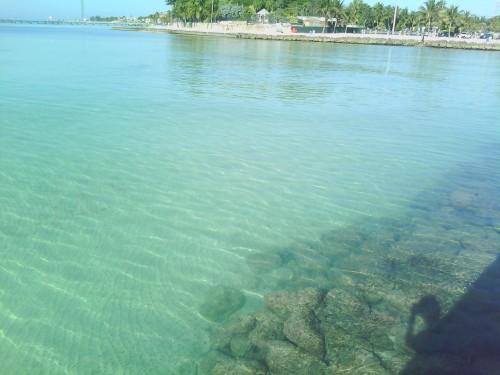 pier water